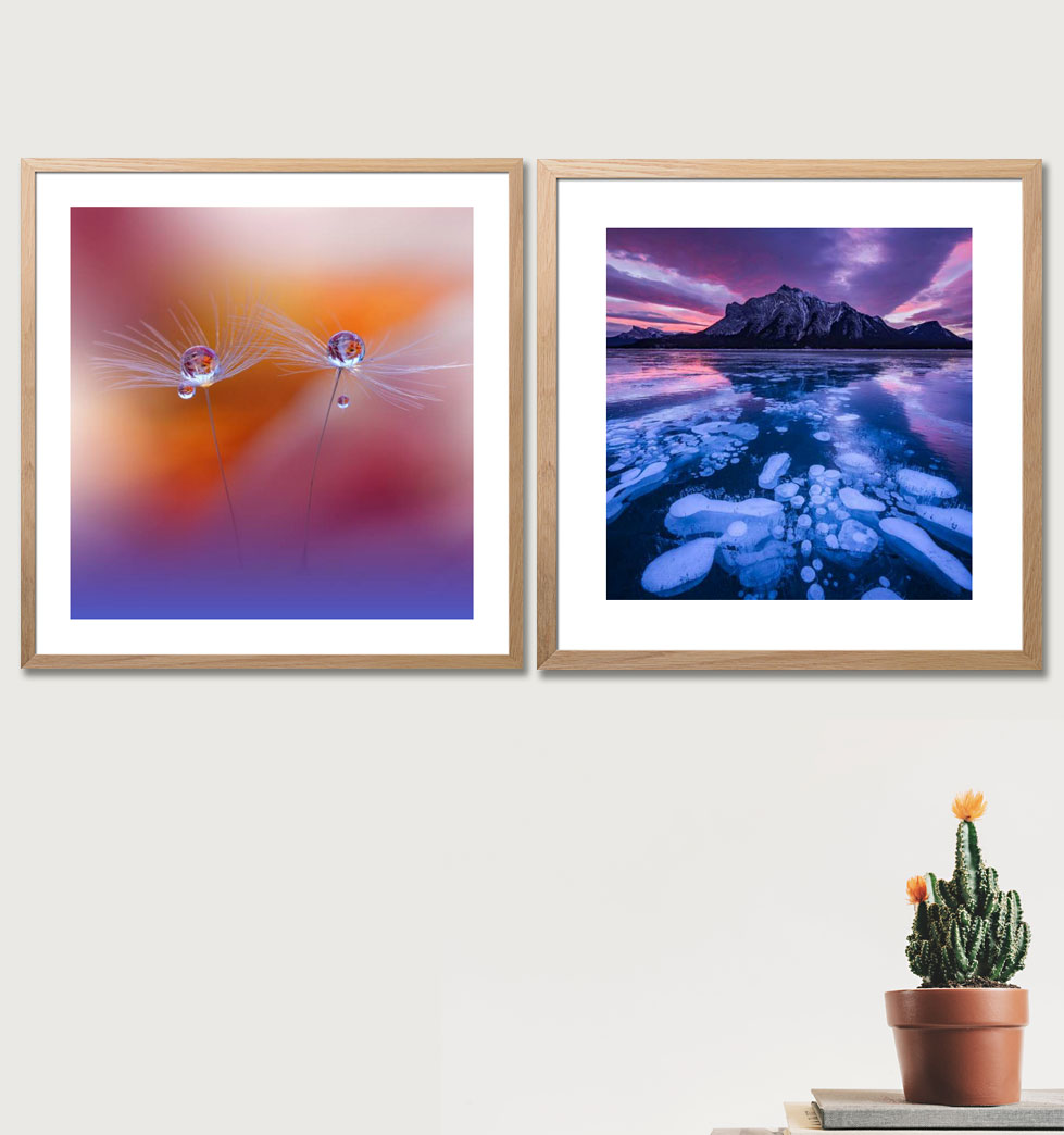 Buy online photo prints as murals