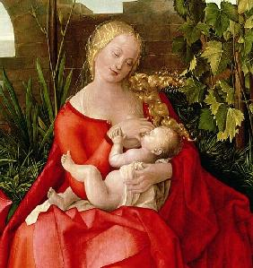 Virgin and Child ''Madonna with the Iris'', 1508 (detail of 22578)