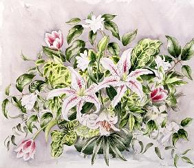 Still life with Tiger Lilies, 1996 (w/c)