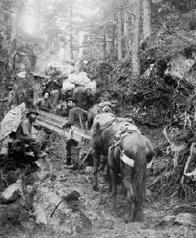 Climbing the Dyea Trail on the way to the Chilkoot Pass during the Klondike Gold Rush (1897-98) (b/w
