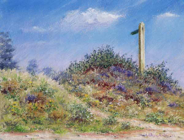 Public Footpath, 2002 (pastel on paper)
