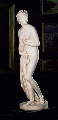 Venus (The Hope Venus), 1818-20 (marble) (see 139521)