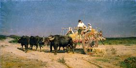 Wagon with Buffalo by the Beach