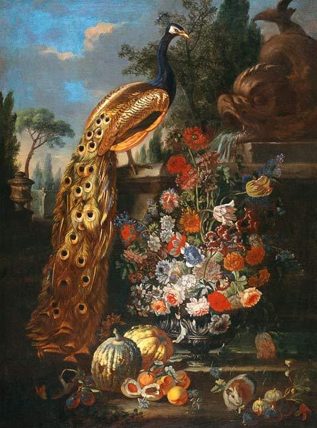 Quiet life with flowers, fruits, Meerschwinchen and peacock.