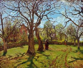 Chestnut trees in Louveciennes, spring