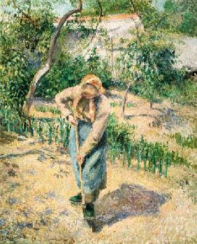 Farmer's wife at the gardening