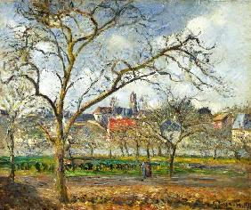 Orchard at Pontoise in early winter