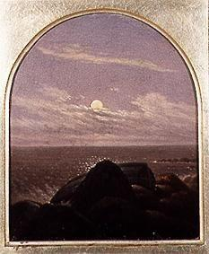 Sea coast in the moonlight
