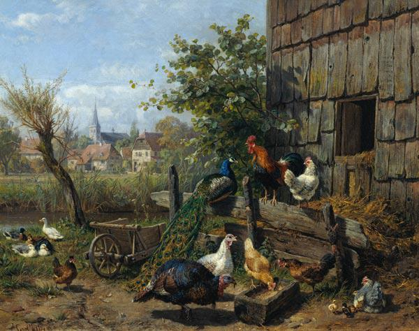 The Farmyard