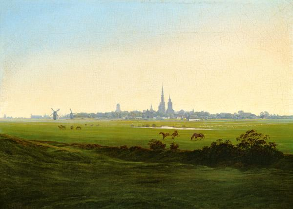 Meadows at Greifswald