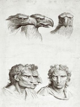 Similarities Between the Head of an Eagle and a Man, from 'Livre de portraiture pour ceux qui commen