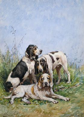 A Group of French Hounds