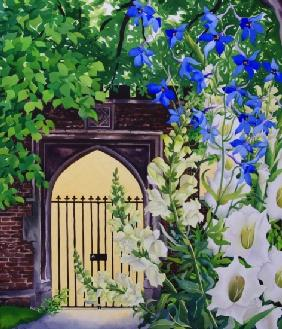 Flowers by a sunlit gateway