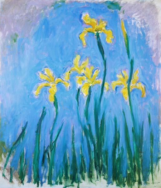 Yellow Iris Claude Monet As Art Print Or Hand Painted Oil