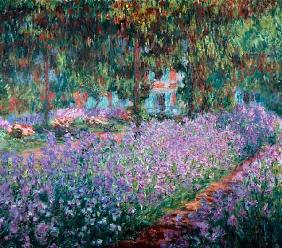 Blooming Iris in Monets garden
