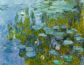 Waterlilies (Nymph�as)
