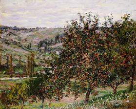 Apple trees at Vetheuil