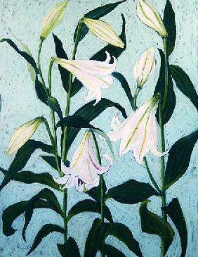 Lilies (pastel on paper)
