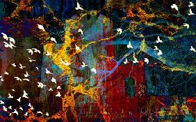 Abstract and Birds