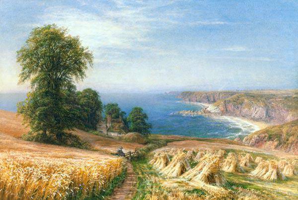 Harvest time by the Sea