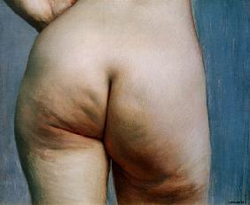 Buttock study