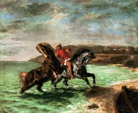 Two horses get out of the sea
