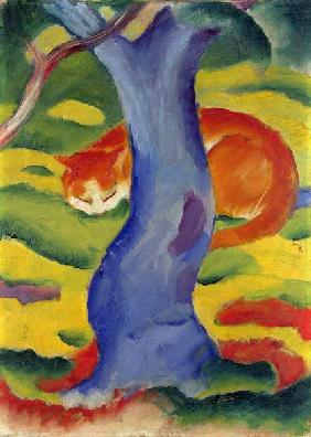Cat Behind a Tree