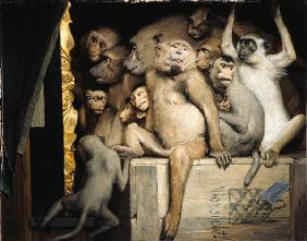 Monkeys as art critics