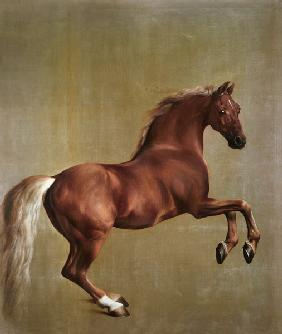 """Whistlejacket"""