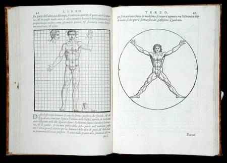 Ideal Proportions Based On The Human Bod Giovanni Antonio