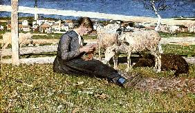 A Girl Knitting