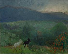Approaching Storm, Telemark