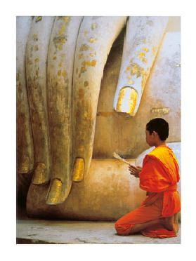 The Hand of Buddha