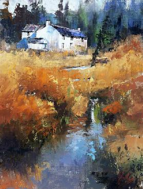 Lazy afternoon