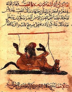 Operation on a horse, illustration from the 'Book of Farriery' by Ahmed ibn al-Husayn ibn al-Ahnaf