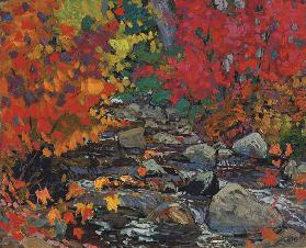 Autumn Leaves, Batchewana Wood