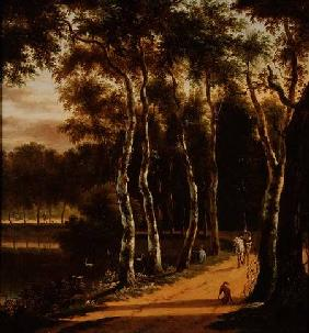 An Avenue of Birches Beside a River