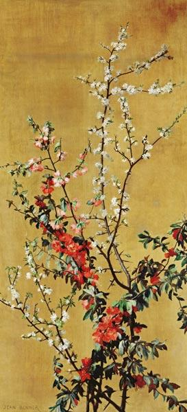 Benner, Jean : Japanese Cherry Tree and H...