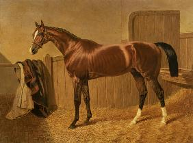 'Orlando' Winner of the Derby in 1844