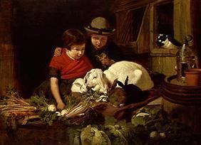 Children with rabbits