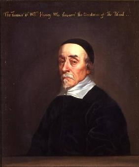 Portrait of William Harvey (1578-1657)