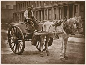 The Water Cart, from ''Street Life in London'', 1877-78 (woodburytype)