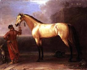 Dun Barb (Horse and Arabian Groom)