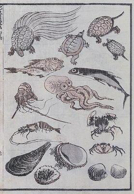 Undersea creatures, from a Manga (colour woodblock print)