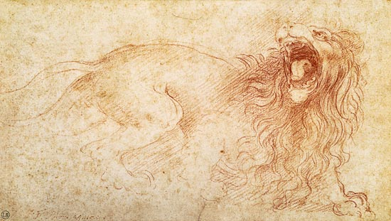 Sketch Of A Roaring Lion Leonardo Da Vinci As Art Print Or Hand Painted Oil How to draw a lion. a roaring lion leonardo da vinci