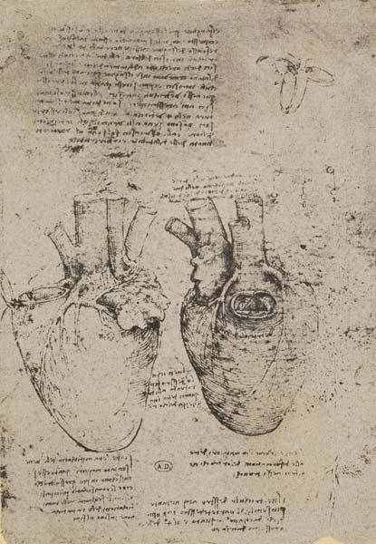 The Heart Facsimile Of The Windsor Book Leonardo Da Vinci As Art