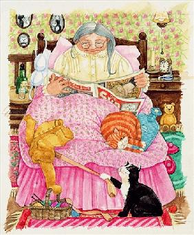 Grandma and 2 cats and a pink bed