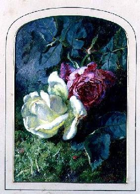 Roses and a ladybird on a mossy bank (board)