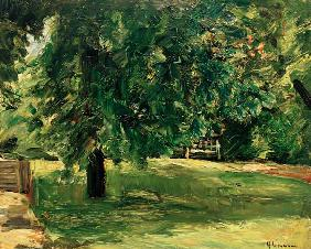 lawn seat under the chestnut tree