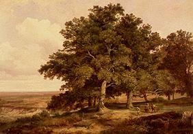 Oak cluster of trees with smallholders in front of a wide landscape.
